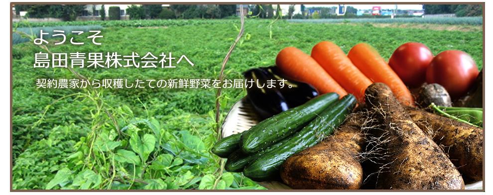 島田青果株式会社 公式ホームページ